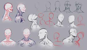 Drawing necks by moni158