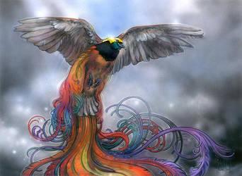 Birds of Paradise by TereseNielsen