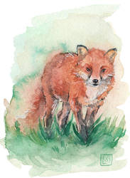 red fox by Lisk-Art