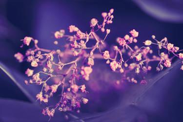 Floral Fantasy by rockandrose