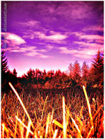 autumn burn by Chaosella