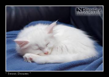 Sweet Dreams by wazabees