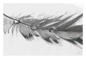.featherdropsFINISH by Honey10