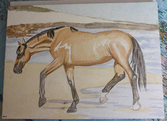 Utopia, the july horse by Arwen-l-elfe