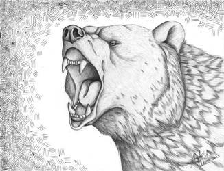 Bear by HDevers