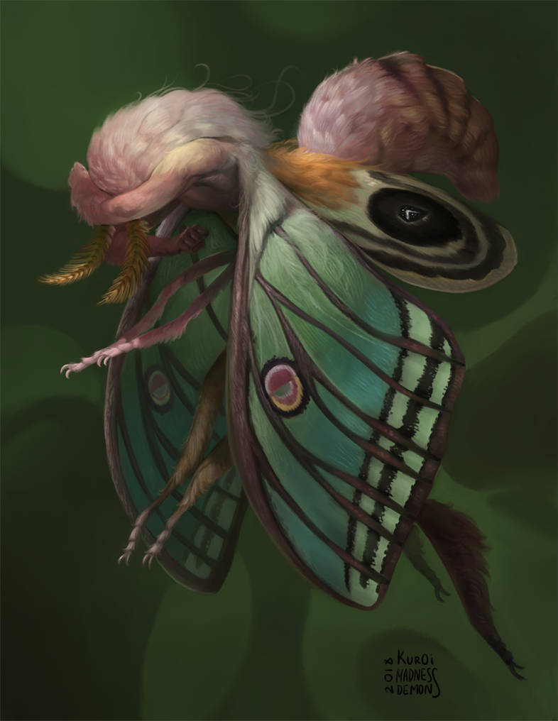 Moth boy by madnessdemon