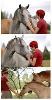 Horse Whisperer ID by DrunkenUnicorn