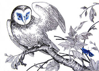 Birds #3 by Calealdarone