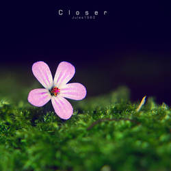 Closer by Jules1983