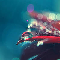 Sparkles I by Jules1983