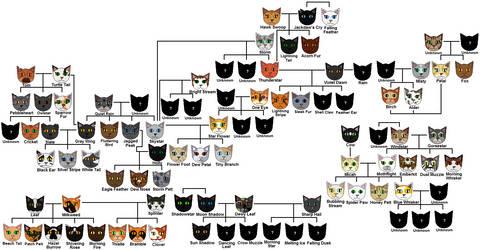 Dawn of the Clans Family Tree by littleLPSWarriorfan