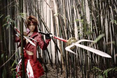 Basara: Yukimura..On the hunt by twinklee