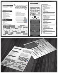 Infographic Resume by tenbiscuits