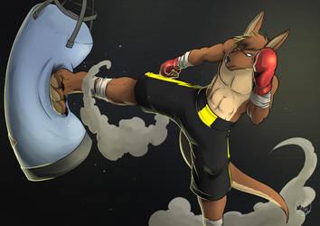 Roo Training by ShadowRoo