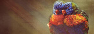 Timeline - Birds by cendredelune