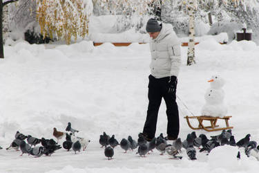 Pulling Snowman on a Sledge through Pidgeons by Anonimus79