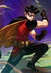 Robin by emmshin
