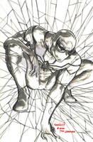 Spider-man FF (pencils) by emmshin