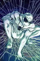 Spider-man FF by emmshin