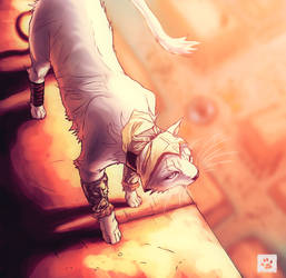 The Assasin's Cat by Mikan-no-Tora