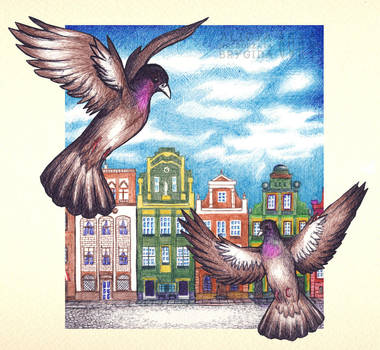 002 (2013-01-11) -- Pigeons - BALLPOINT drawing by missi-alicja