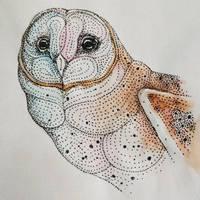 Barn Owl by artifexToils