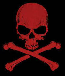 skull by LonelyValentine