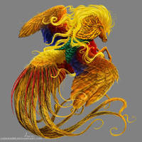 Golden Pheasant by Lenika86