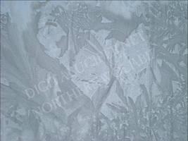 Frost Patterns by skotnoctis