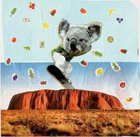 koala border by aiculedssul