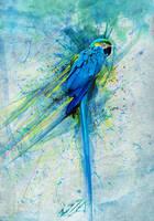_blue harmonic_ by southtreez