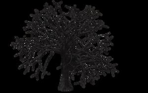 Tree 05 by Free-Stock-By-Wayne