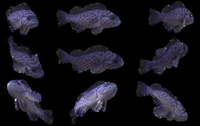 Fish Set 09 by Free-Stock-By-Wayne