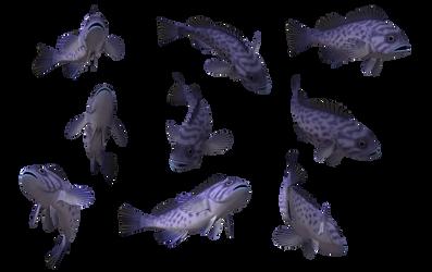 Fish Set 10 by Free-Stock-By-Wayne