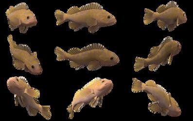 Fish Set 11 by Free-Stock-By-Wayne