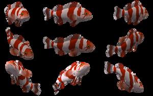 Fish Set 15 by Free-Stock-By-Wayne