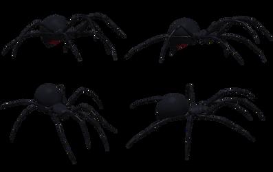 Black Widow Spider Set 03 by Free-Stock-By-Wayne
