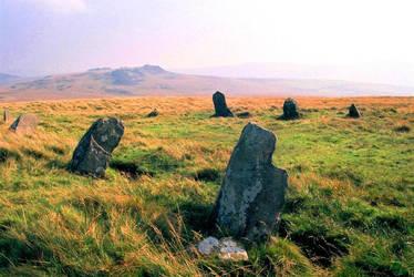 Welsh sentinels by dshubble