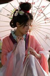 Mulan: A perfect Bride by JoLuffiroSauce
