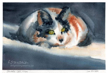 Haliburton2014 - Sfumato Cat by brightling