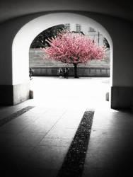 Passageway Out by jOphir