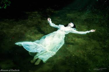 No more Ophelia by FaerieBlossom