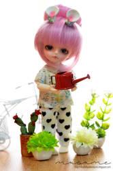 Merry's Garden by musumedesu