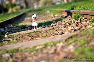 Train Rails by musumedesu