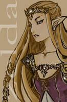 zelda twilight princess by Marubad