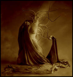 Births of new sorts by mastadeath