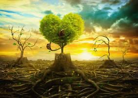 Rebirth of paradise by mastadeath