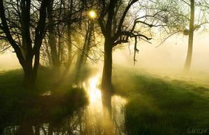 Forgotten morning by Elenya-Noldo
