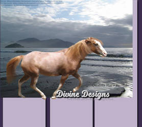 Horse Manip 5 by luckydesigns
