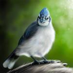 Little blue bird by Dr-F0x